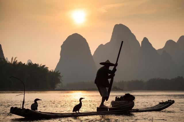 Scenic Cormoran Fishing, Yangshuo_China copy.JPG